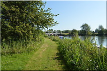 SP4710 : Footpath, King's Lock Island by N Chadwick