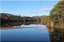 NN9357 : Loch Faskally in Autumn sunshine by Graeme Yuill