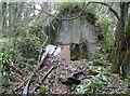 ST5067 : Ruined cottage in Bourton Combe by Neil Owen