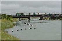 TQ0004 : Viaduct across the River Arun by N Chadwick