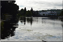 SU8586 : River Thames at Marlow Weir by N Chadwick