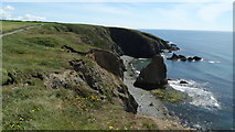 X4598 : View E along coast at Tankardstown (North) Engine House, Co Waterford by Colin Park
