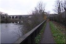 SE4843 : River Path by DS Pugh