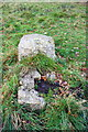SK5644 : Remains on trig pillar on Sunrise Hill by Roger Templeman