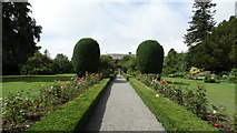 S8665 : Altamont Gardens, Co Carlow - gravel path leading to house by Colin Park