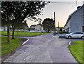 N7956 : Trim. St Patrick's Park by David Dixon