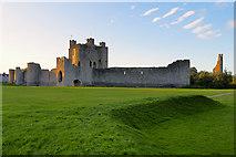 N8056 : The Castle at Trim by David Dixon