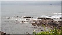SX4949 : Rocks, Crownhill Bay by N Chadwick
