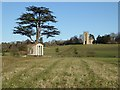 SO8844 : Adam Treehouse in Croome Park by Philip Halling