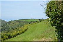 SX4249 : Field near Rames Head by N Chadwick
