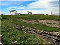 NZ3376 : Rocky Island, Seaton Sluice by Andrew Curtis
