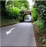 ST9898 : Descent towards a railway bridge near Kemble by Jaggery