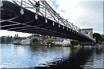 SU8586 : Marlow Bridge by N Chadwick