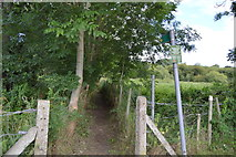 SU8485 : Footpath to Lower Pound Lane by N Chadwick