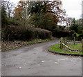 SO3828 : Rabbit Lane, Ewyas Harold by Jaggery