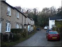 SD4577 : Lynslack Terrace, Arnside by Richard Vince