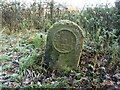NY3872 : Old Milestone by the A7, near Watch Hill Wood by CF Smith
