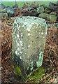 NZ1433 : Old Milestone by IA Davison