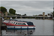 SU8486 : Moored boats, River Thames by N Chadwick