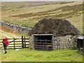 SE0958 : Shooting hut beside White Wham Beck by Trevor Littlewood