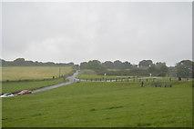 SX4952 : Stamford Lane by N Chadwick