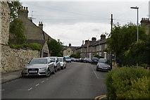 TL4659 : Saxon Rd by N Chadwick