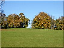 TM1542 : In Bourne Park, Ipswich by Robin Webster