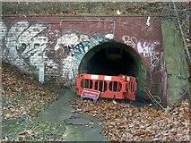 SE2833 : Pedestrian subway to Sutton Street by Alan Murray-Rust