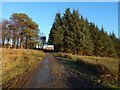 NS4178 : Farm track at Highdykes by Lairich Rig