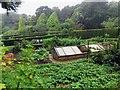 SZ4083 : The Kitchen Garden at Mottistone Manor by Steve Daniels