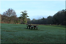 NS2209 : Picnic Area at the Swan Pond, Culzean by Billy McCrorie