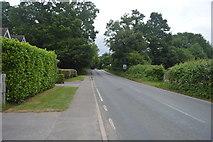 TQ3130 : Haywards Heath Rd by N Chadwick
