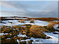NS9119 : Summit of Ravengill Dod by Alan O'Dowd