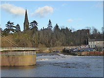 SX9192 : The weir on the Exe at Miller's Crossing by David Smith