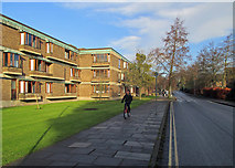 TL4359 : Churchill College and Storeys Way by John Sutton