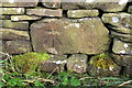 SE0237 : Benchmark on Dimples Lane wall by Roger Templeman