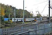 TM1543 : Sidings, Ipswich station by Robin Webster