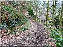 SE0722 : Dye House Lane, Norland by Humphrey Bolton