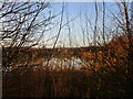 SK7048 : Lagoon through the branches by Jonathan Thacker