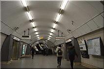 TQ3179 : Waterloo Underground Station by N Chadwick