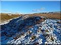 NS4278 : Upper Auchenreoch Glen by Lairich Rig