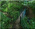 NZ4345 : Footbridge in Hawthorn Dene by Mat Fascione