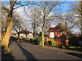 SJ8492 : Ballbrook Avenue, Didsbury, Christmas Day near noon by David Hawgood