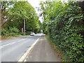 SJ7979 : Hall Lane, Mobberley by Gerald England