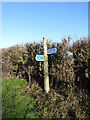 SO8670 : National Cycle Route 45 sign by Jeff Gogarty