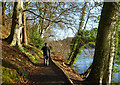 NS2209 : New Year's Day At Culzean by Mary and Angus Hogg