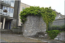 SX4853 : Plymouth Castle by N Chadwick