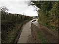 ST5400 : Flooded Wessex Ridgeway at Kingcombe Lane by Becky Williamson