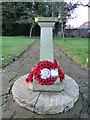 TF6103 : Second World War Memorial in Downham Market by Adrian S Pye