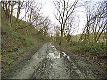 SE2433 : Muddy track in Post Hill woods by Stephen Craven